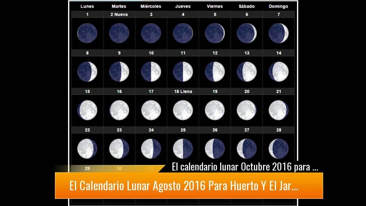Calendario del 2016 con los cambios de luna descubre el for Cambios de luna 2017