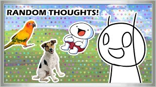 Random Thoughts (Nate Edition)