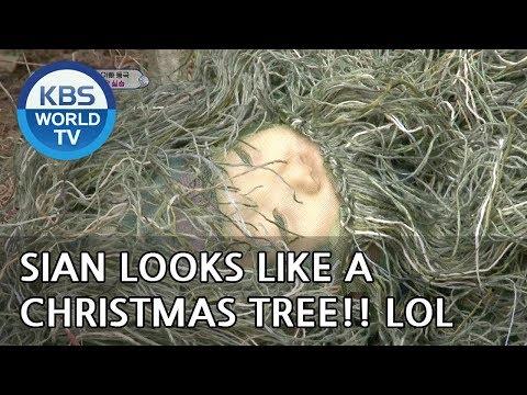 Sian looks like a Christmas tree LOL [The Return of Superman/2018.12.16]