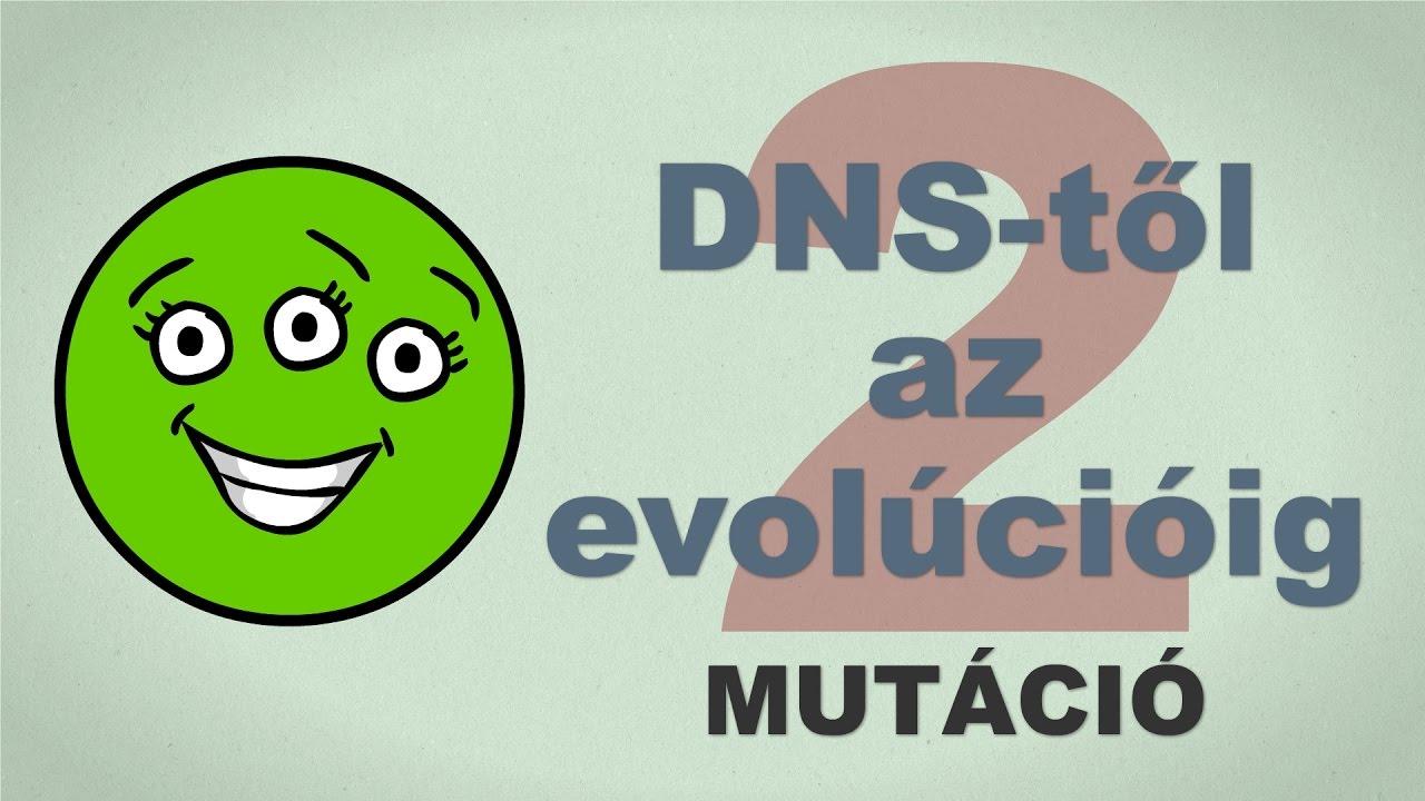 A DNS-től az evolúcióig - csak egyszerűen (2. rész)