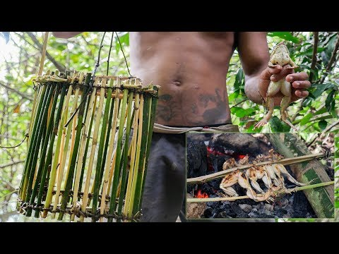 Primitive Technology, Making frog trap for catching frog - Frog Trap