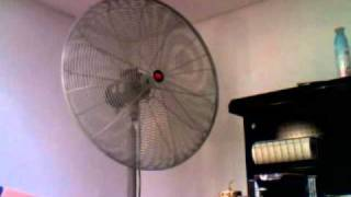 Dayton Industrial Pedestal Fan
