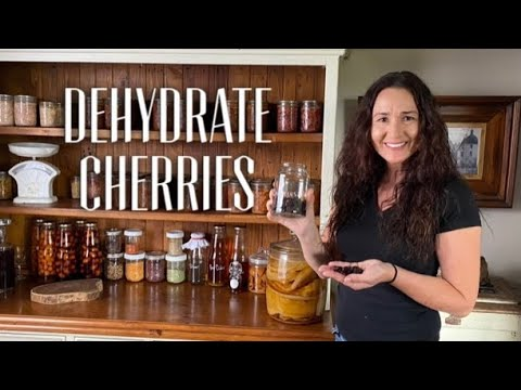EASY DEHYDRATING CHERRIES - Dehydrate Cherries With A Food Dehydrator