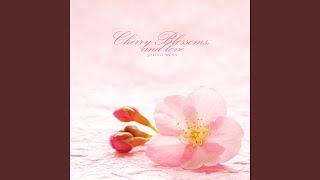벚꽃, 그리고 사랑 (Cherry Blossoms, And Love)
