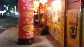 (상가임대)중랑구 사가정동 식당옆공실점포.