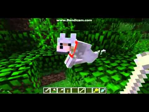 How To Get A Skeleton Dog In Minecraft