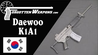 Daewoo K1A1: A Hybrid AR-15 and AR-18