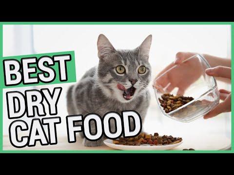 Best Dry Cat Food   TOP 5 Dry Cat Foods  2020 🐱 ✅