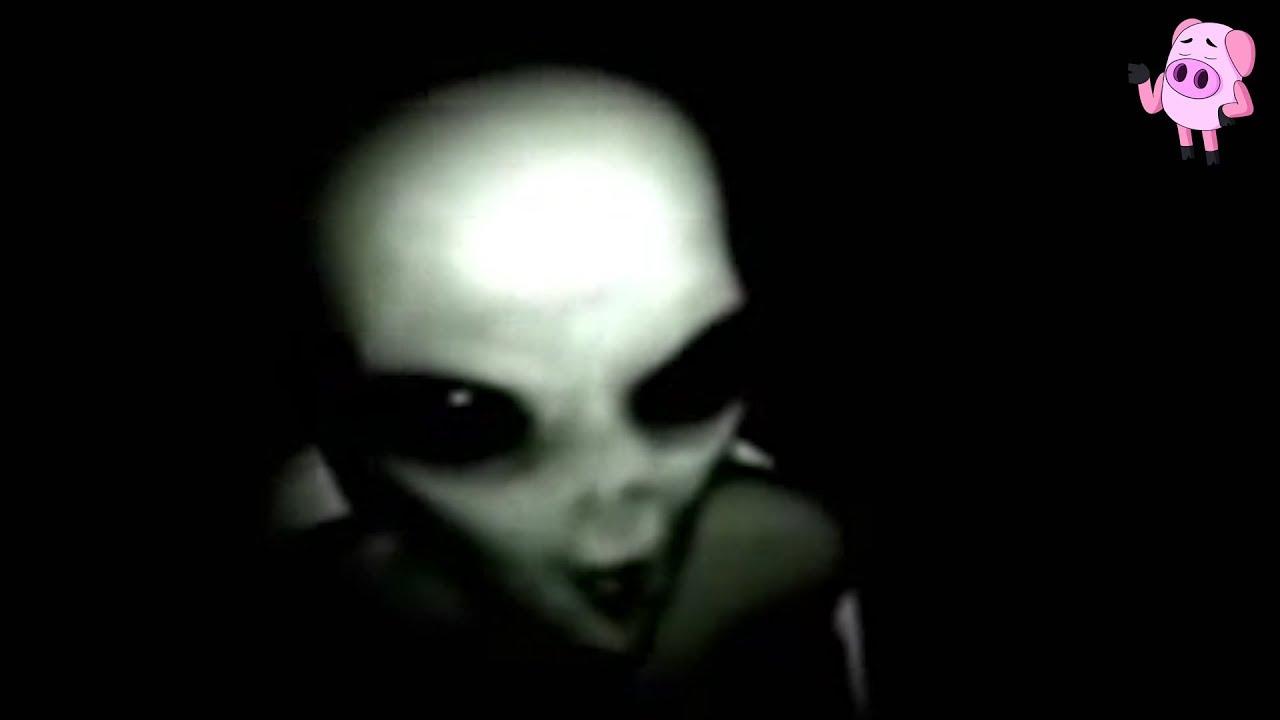 real alien video