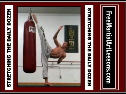 martial arts stretching routine pdf