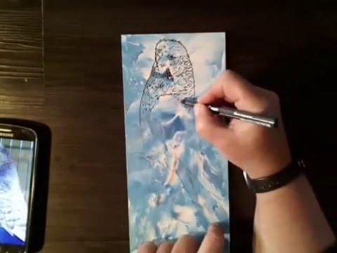 Dessiner une perruche by rewiak youtube - Dessin perruche ...