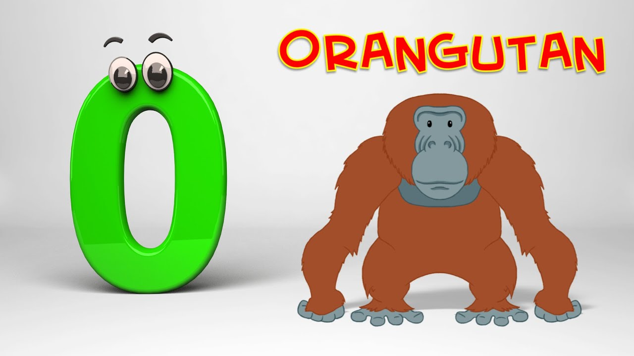letter o song abc song phonics letter o 22922 | maxresdefault