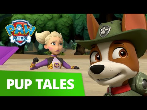 Pups Save the Jungle from Cheatin Cheetah! | PAW Patrol | Cartoons For Kids!