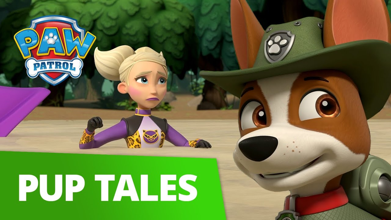 Download Pups Save the Jungle from Cheatin Cheetah! | PAW Patrol | Cartoons For Kids!