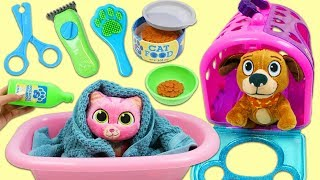 Feeding and Grooming Disney Doc McStuffins Whiskers and Findo Cute Pets!