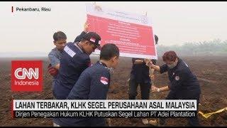 Lahan Terbakar, KLHK Segel Perusahaan Asal Malaysia