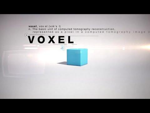 VOXEL SCARICA