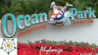 Exploring Hong Kong: Roller coasters and Aquarium in Ocean Park | Alybongo
