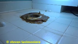 toilet water leaking through floor