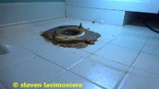 Video toilet water leaking through floor download MP3, 3GP, MP4, WEBM, AVI, FLV Agustus 2018