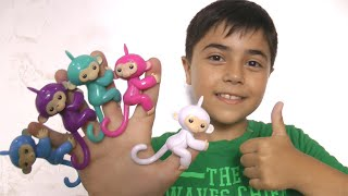 Finger Family |Deddy Finger Song with Guka  and Color Monkeys