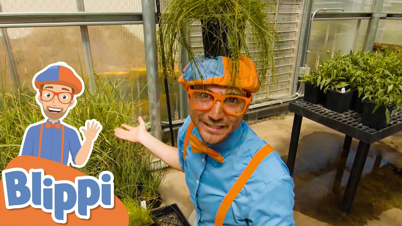 Blippi Visits A Greenhouse!   Learn Colors For Kids   Educational Videos For Toddlers