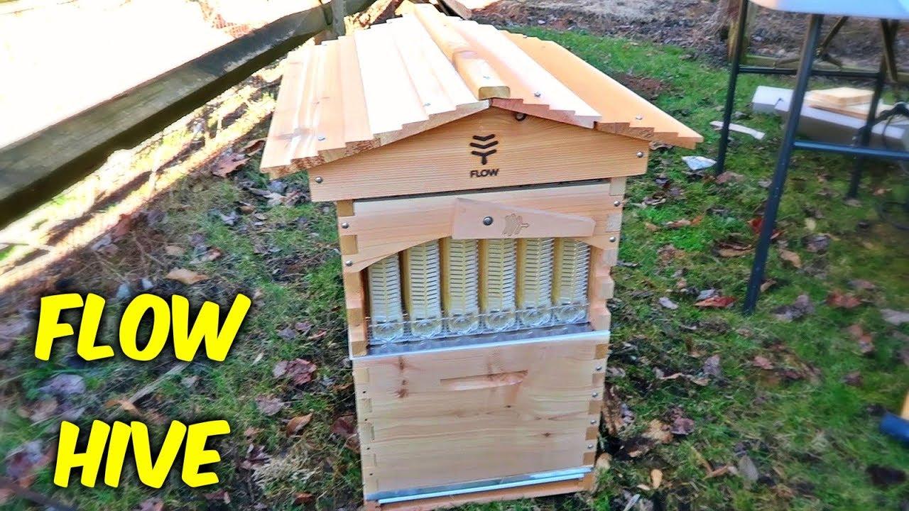 flow hive review youtube. Black Bedroom Furniture Sets. Home Design Ideas