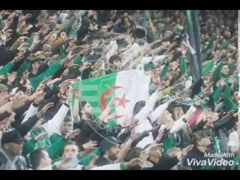 Les Algérien rassa