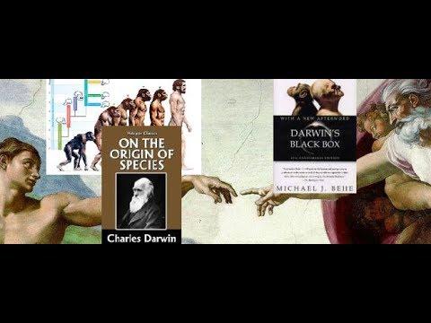 Ryan Grant Interview w/ Hugh Owen of the Kolbe Center - Creation vs Evolution