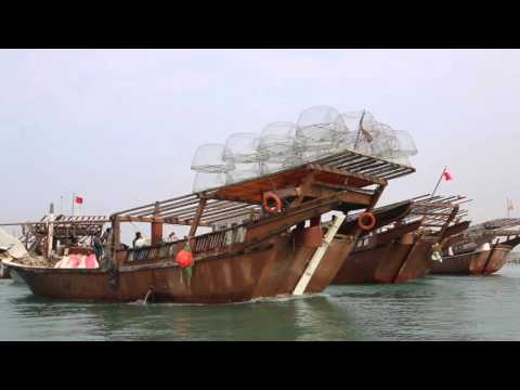 Bahrein Al Muharraq Navigation Avec Un Pêcheur / Bahrain Al Muharraq Boat With Fish Man