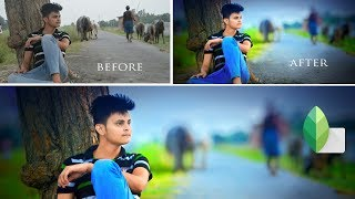 Blur Background + Best Colour effect Editing in Snapseed 2019 - #nitscreations
