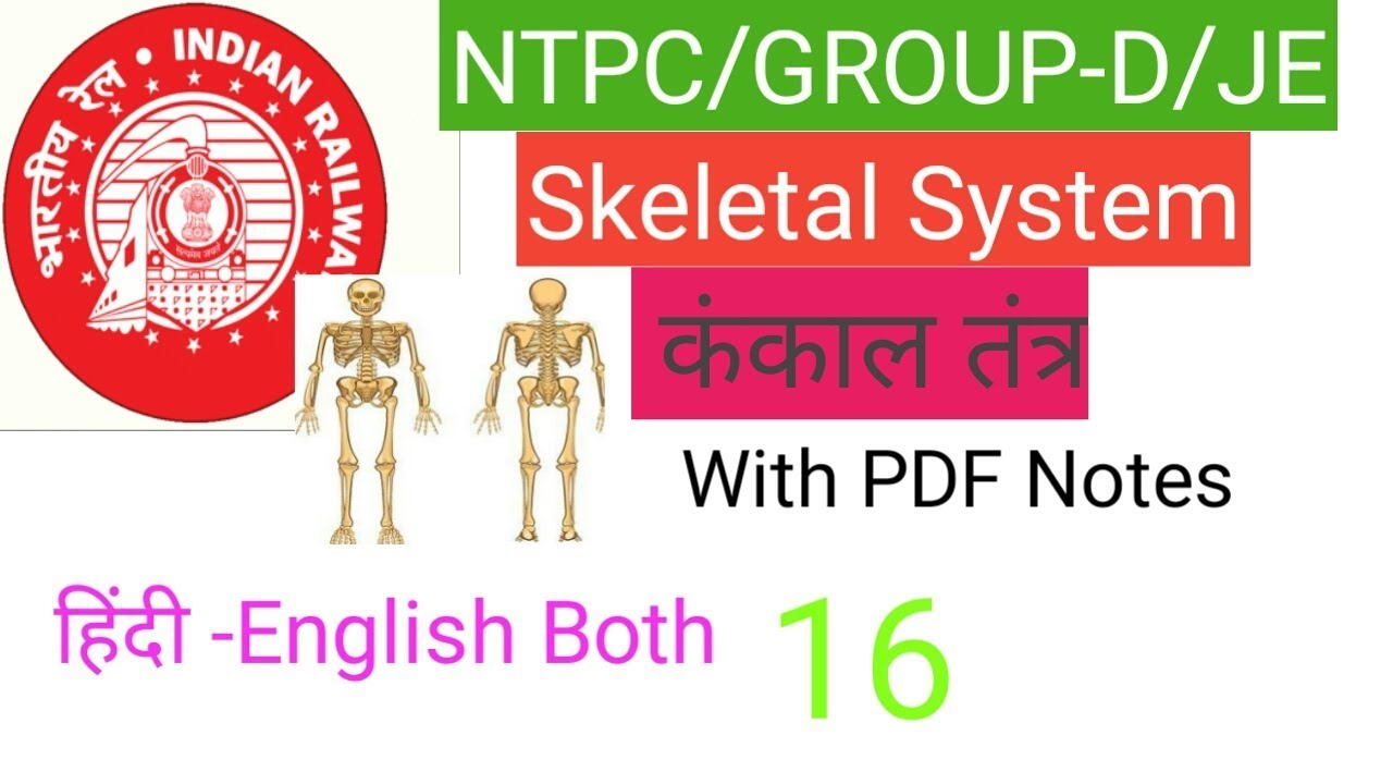General Science - Biology Skeletal system for RRB JE / NTPC / Group D/SSC  CGL / CPO / CHSL Lec-16