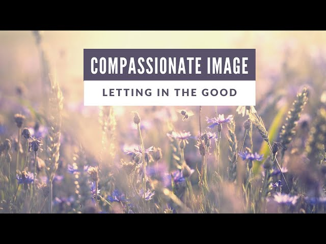 Compassionate Image- Letting in the Good
