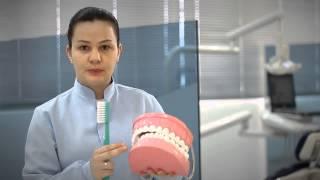 Ortomaster  - Escovação Bucal com Dayane Boareto