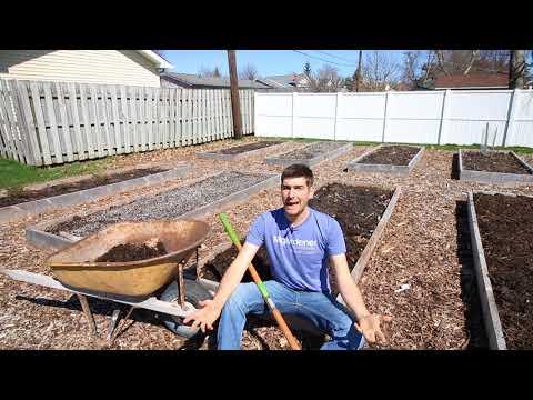 Till vs. No Till Gardening - Pros & Cons of Each