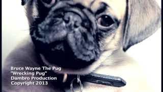 Wrecking Pug
