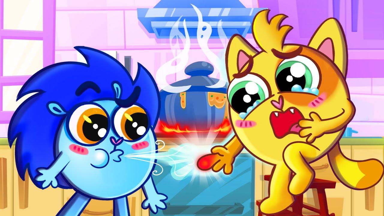 😻First Aid Rule Song 🤕🧊 | Baby Zoo Kids Songs 😻🐨🐰🦁 And Nursery Rhymes