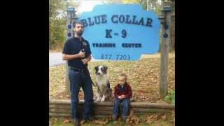 Blue Collar K-9 Training Center - A Well Trained Dog Is A Happy Dog.