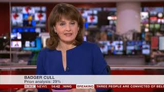 BBC interviews Iain McGill - BBC NEWS - BADGER CULL LIES 12/11/2018