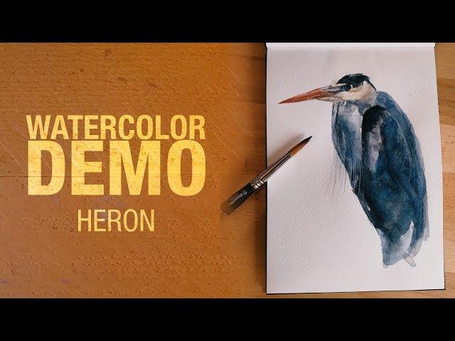 Watercolor demo - Heron