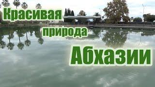 Красивая природа Абхазии