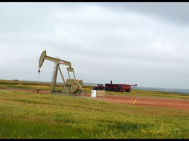 Bakken : Grain versus Oil