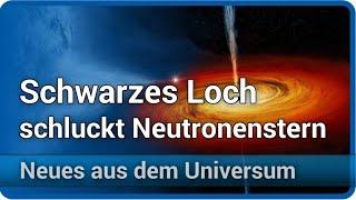Gravitationswellen: Schwarzes Loch schluckt Neutronenstern | Andreas Müller