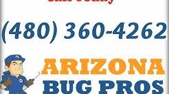 Scorpion Control Mesa AZ (480) 360-4262
