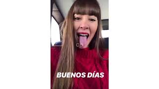REENCUENTRO OT2017. Videos de los concursantes