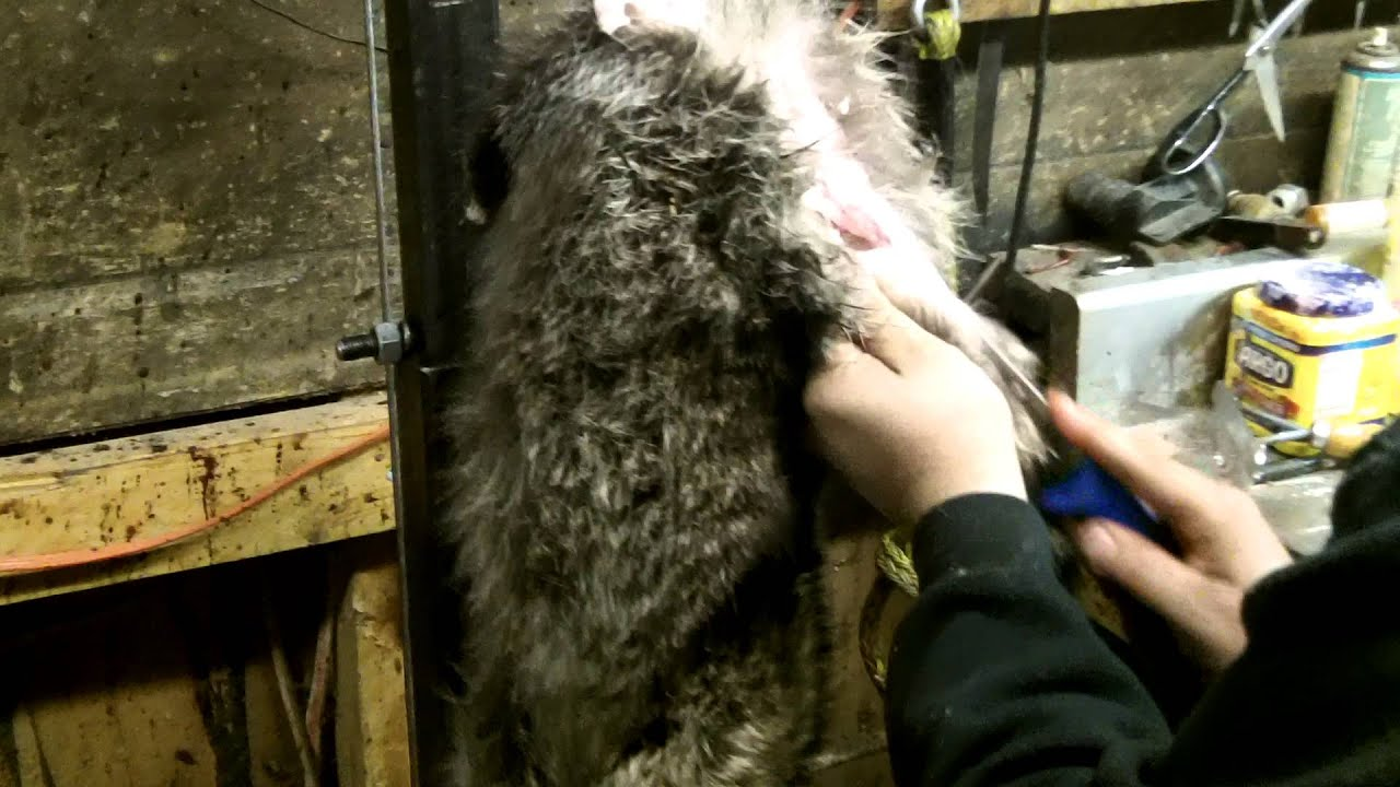 fur skinning machine