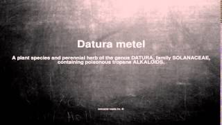 Medical vocabulary: What does Datura metel mean