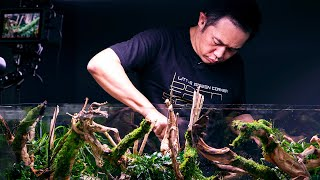 PLANTED TANK LEGENDS - 7x WORLD CHAMPION JOSH SIM WORKSHOP