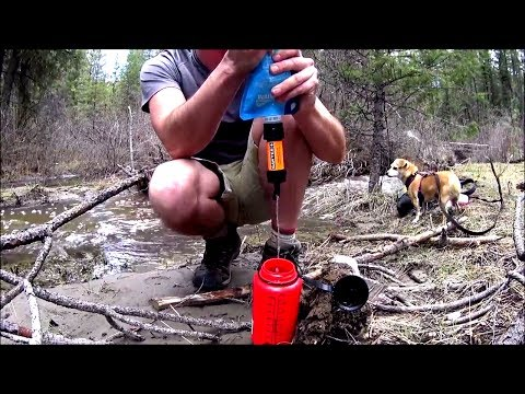 🐾Hiking With My DOG🐶Camping & Backpacking Gear