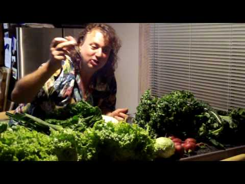 Howard Dinits eats organic veggies He is a vegetarian Real Estate agent in Maui Hawaii